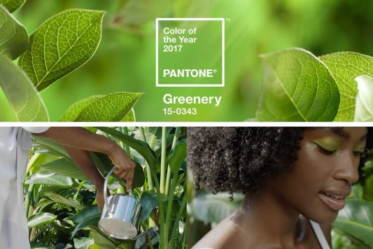 Greenery en beauté, couleur Pantone 2017