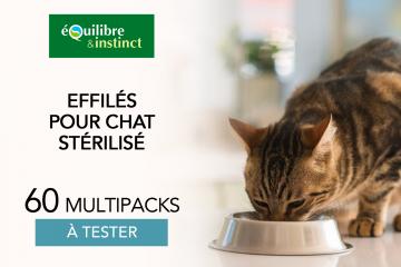 Multipacks d'effilés pour chat stérilisé : 60 multipacks à faire tester à vos petits chats chéris !