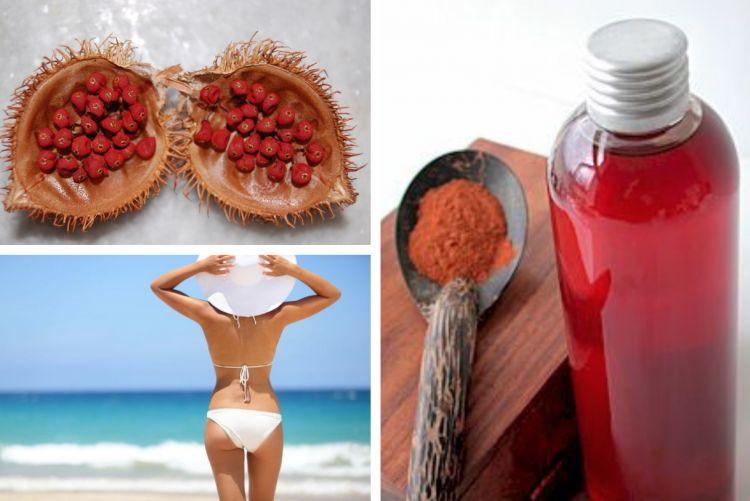 L'urucum : une plante qui prépare la peau au soleil