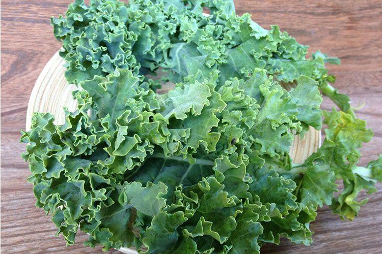4 raisons de consommer du chou Kale