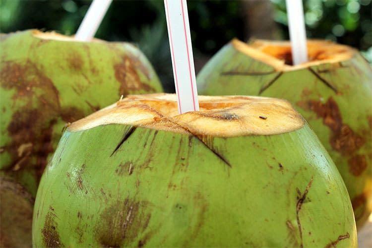 L'eau de coco, une boisson indispensable ou pas ?