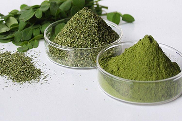 Moringa, super-aliment tendance
