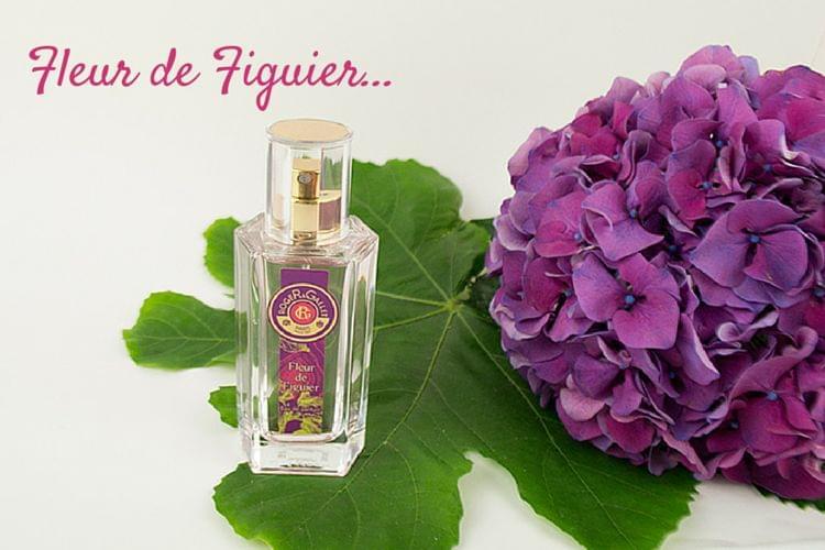 Fleur de Figuier l'Eau de Parfum, la nouvelle création irrésistible de Roger et Gallet