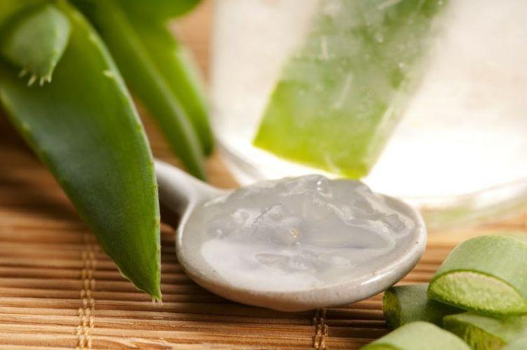 10 Utilisations de l'Aloe Vera en beauté