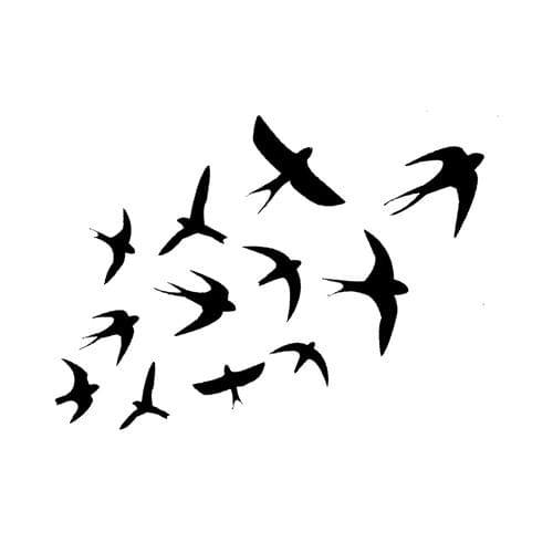 Tattoo Hirondelles, Marbella - Infos et avis