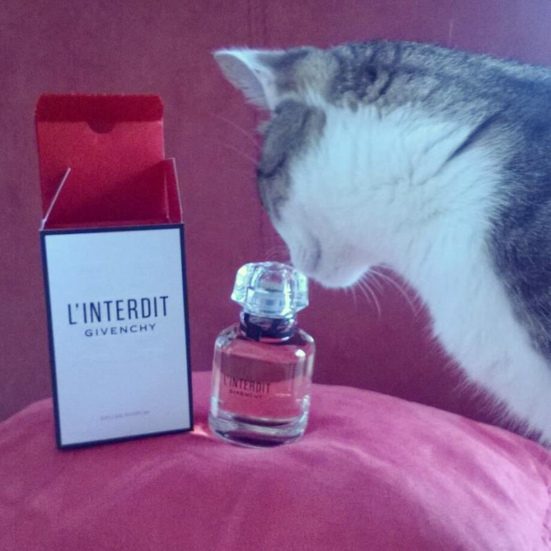 Parfums De Avis Eau L'interdit Givenchy Wkpxtoiuz Parfum mwnNO80v